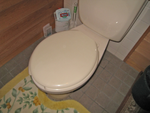 toilet002_01-before__2.jpg
