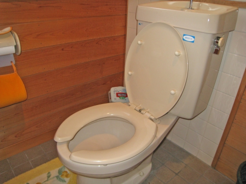 toilet002_02-before__2.jpg